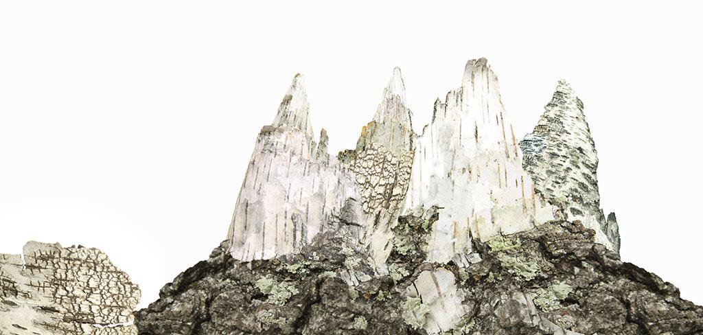 animaBIRIKI_montagnabetulla